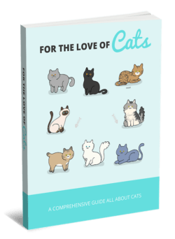 For The Love Of Cats PLR Bundle