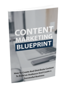 Content Marketing Blueprint PLR Bundle
