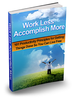 Work Less Accomplish More PLR Bundle
