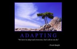 """Free """"Adapting"""" Wallpaper"""