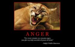 "Free ""Anger"" Wallpaper"