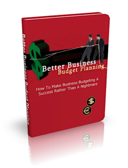 Better Business Budget Planning PLR Bundle