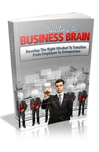 Building The Business Brain PLR Bundle