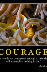 """Free """"Courage"""" Wallpaper"""
