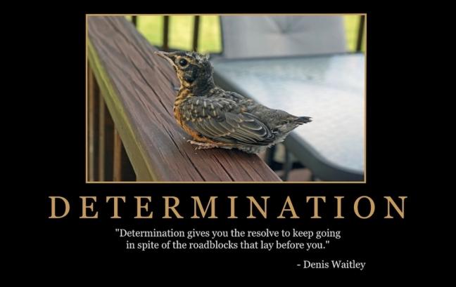"""Free """"Determination"""" Wallpaper"""