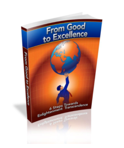From Good To Excellence PLR Bundle