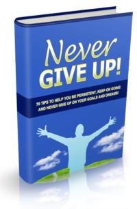 Never Give Up PLR Bundle