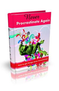 Never Procrastinate Again PLR Bundle