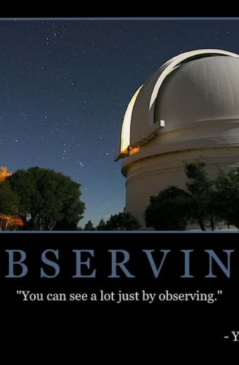 "Free ""Observing"" Wallpaper"