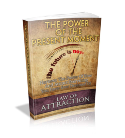 The Power Of The Present Moment PLR Bundle