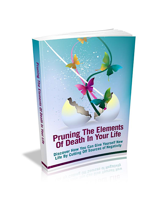 Pruning The Elements Of Death In Your Life
