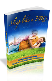 Sleep Like A PRO PLR Bundle