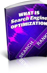 What Is Search Engine Optimization PLR Bundle