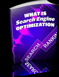 What Is Search Engine Optimization PLR Bundle