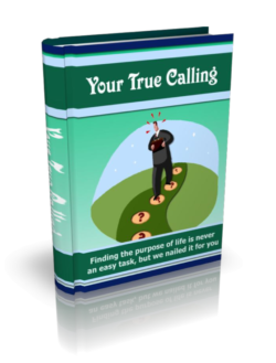 Your True Calling PLR Bundle