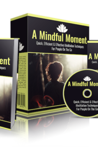A Mindful Moment PLR Bundle