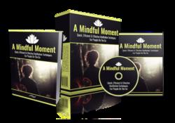 A Mindful Moment PLR Bundle