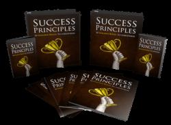 Success Principles PLR Bundle